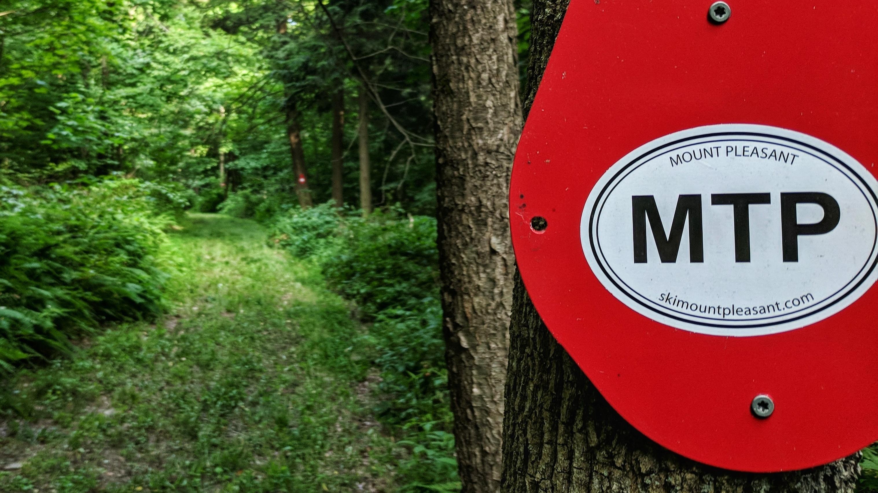 Mount Pleasant Summer Access 4